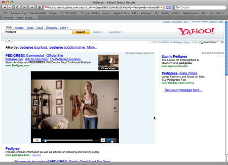 Rich Ads in Search 米 Yahoo ! 新広告