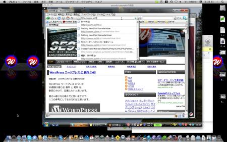 MacOSX のスカイプに Windows Vista の画面