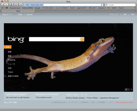 Bing 今月になって 被リンク情報 が見え出した