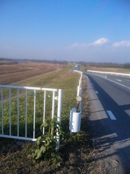 超向かい風! 久しぶりのサイクリング 川越 入間大橋