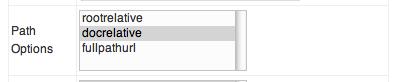 TinyMCE プラグイン 設定 Path Option